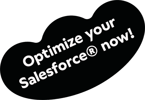 Optimize your Salesforce now
